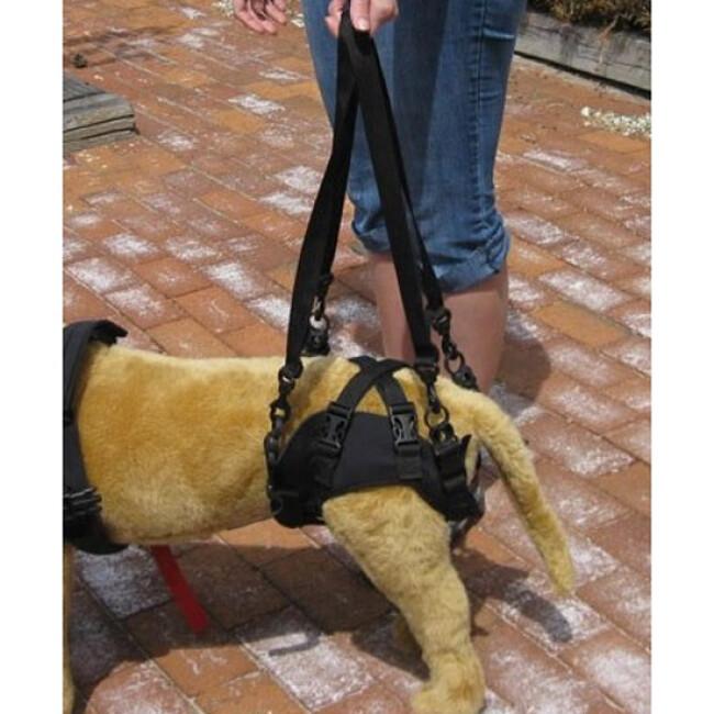 Baudrier de maintien pour chien handicapé Confort Speed