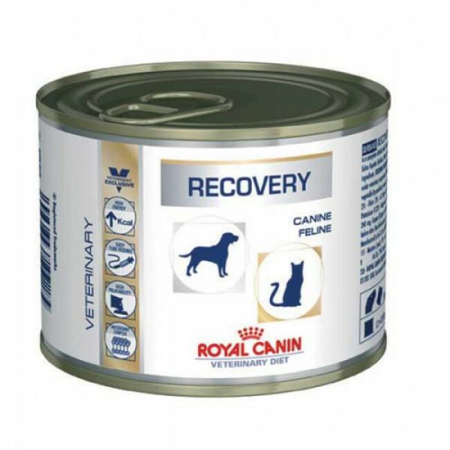 Boîtes pour chiens et chats Royal Canin Veterinary Diet Recovery - lot de 12 * 195 g