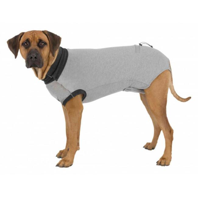 Body de protection gris pour chien Trixie