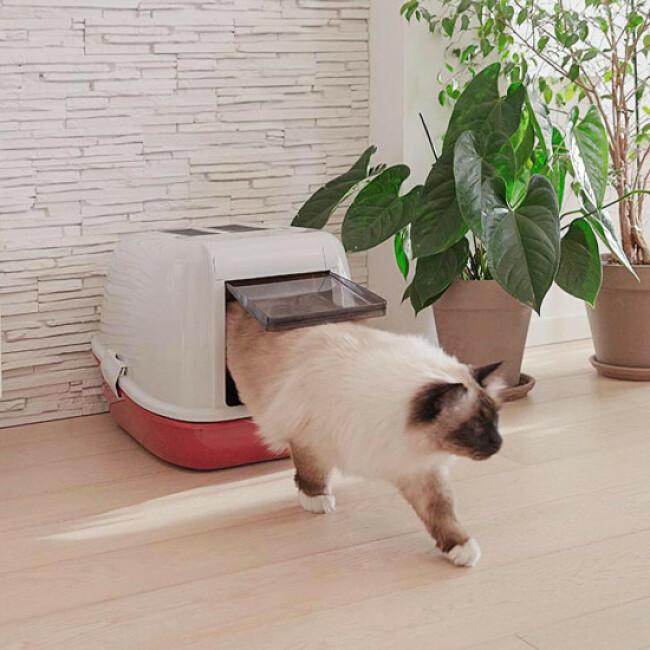 Box maison toilette Tamis Magix pour litière de chat