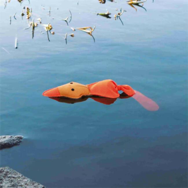 Canard flottant pour chien