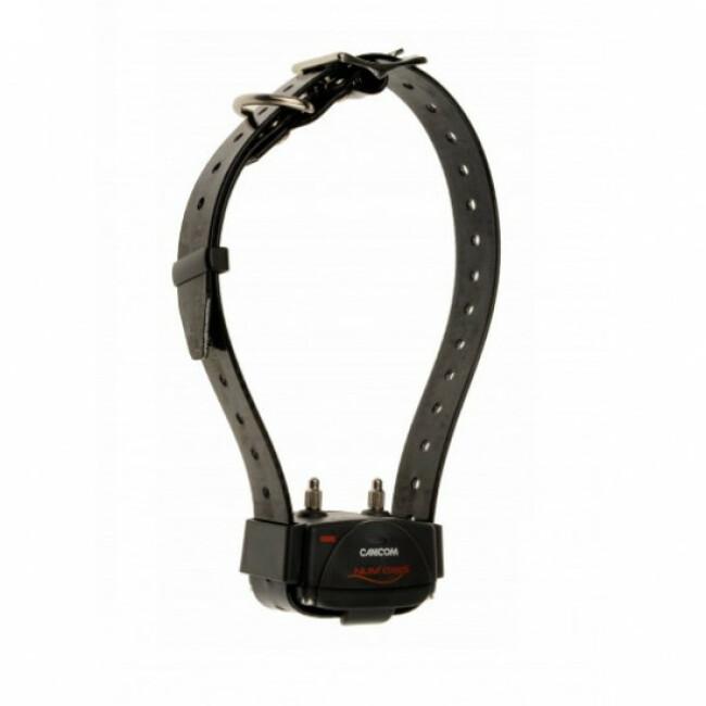 Canicom 800 Num'axes collier de rappel pour chien