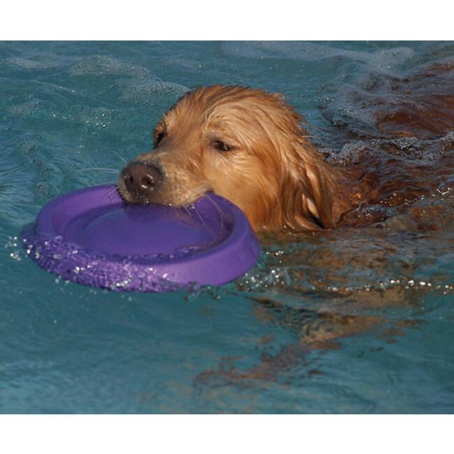Canifrisbee frisbee Easy Glider en mousse technologique pour chien