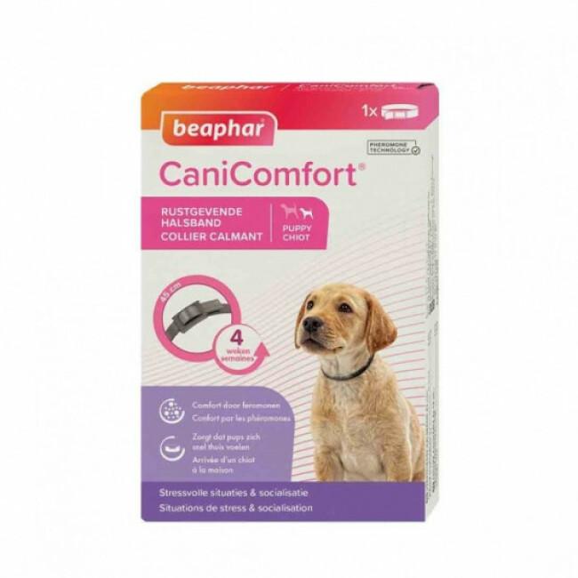Collier calmant CaniComfort aux phéromones pour chien et chiot