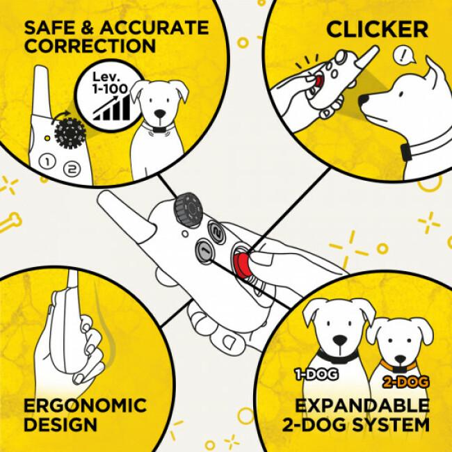 Collier de dressage à distance pour chien Dogtra iQ CLIQ