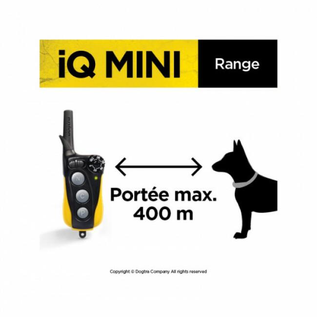 Collier de dressage à distance Dogtra iQ Mini pour petits chiens