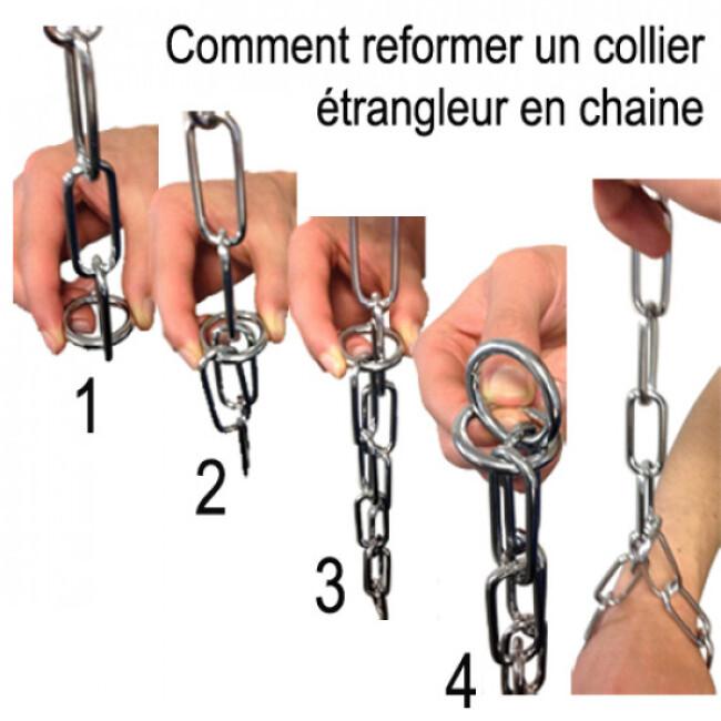 Collier étrangleur pour chien chaîne acier