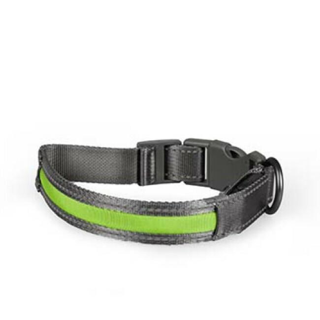 Collier Flash Light vert Duvoplus pour chien