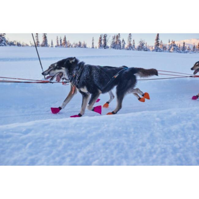 Collier pour chien Polar Collar NON-STOP Dogwear