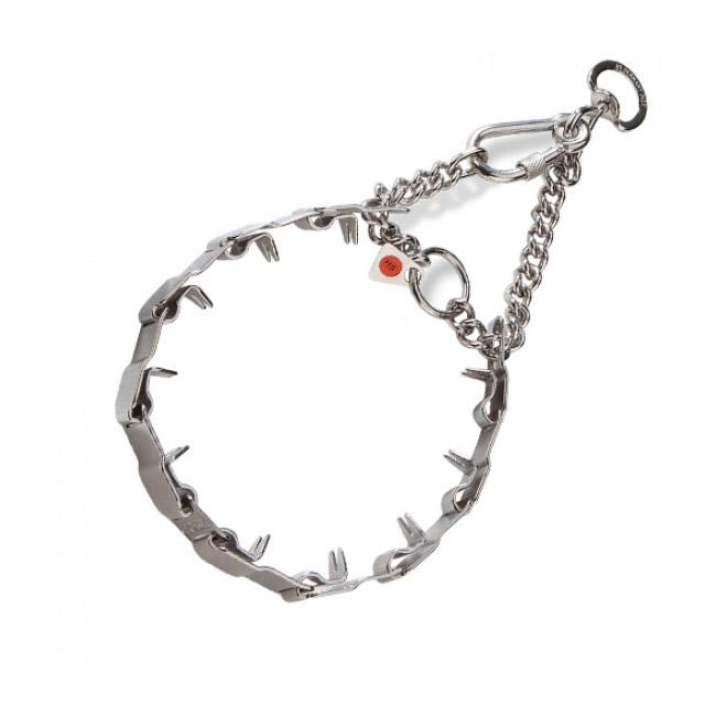 collier pour chien inox