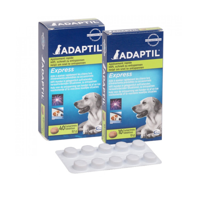 Comprimé Adaptil pour la réduction du stress chez le chien