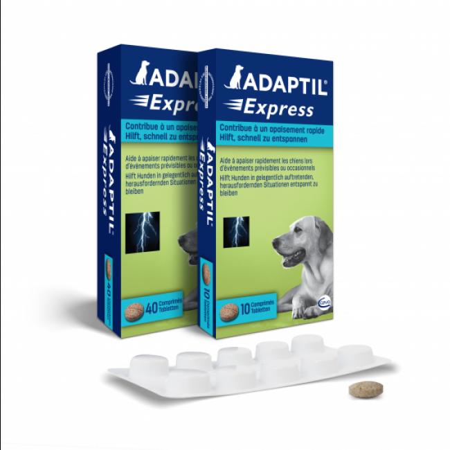 Comprimés Adaptil Express Ceva anti stress chien