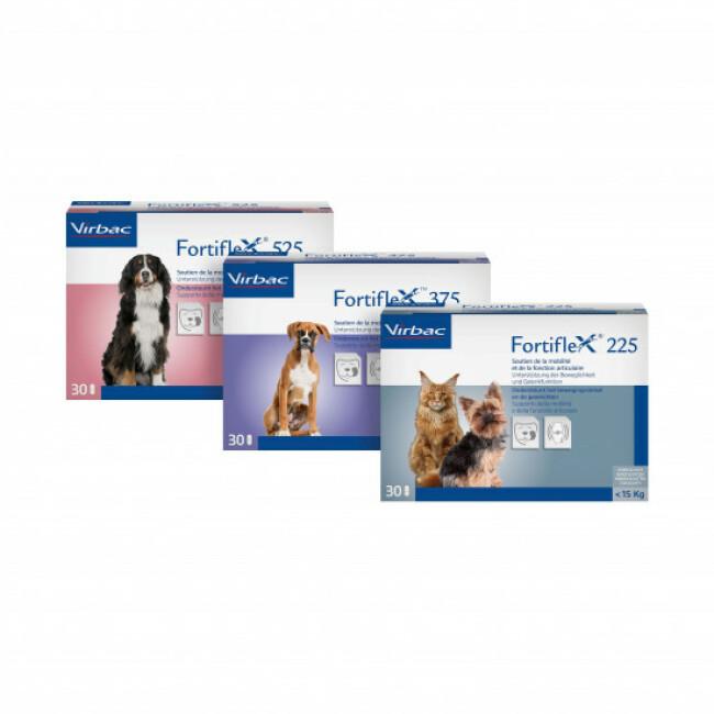 Comprimés Fortiflex pour chien et chat souffrant d'arthrite et d'arthrose