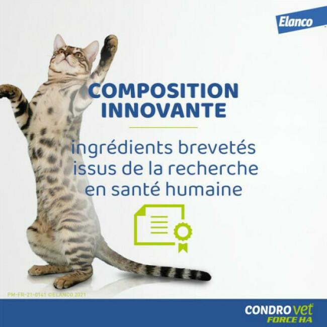 Condrovet complément alimentaire pour chat