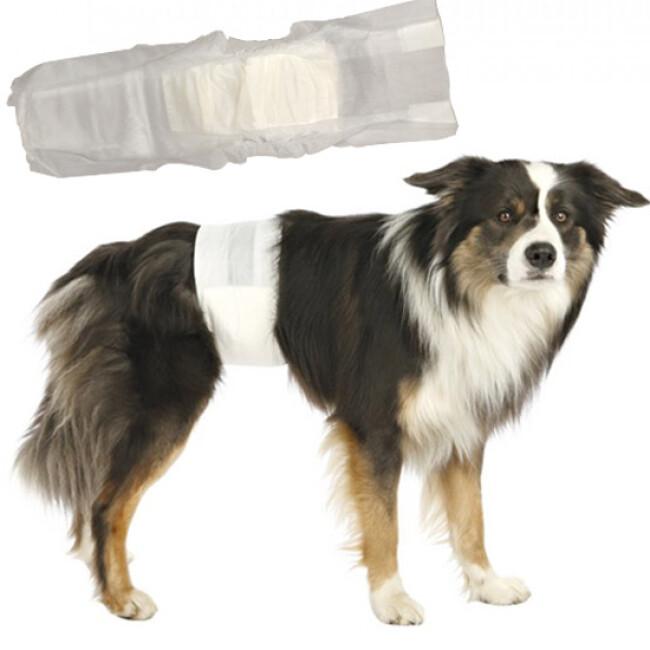 Couche d'incontinence jetable pour fuite urinaire du chien mâle