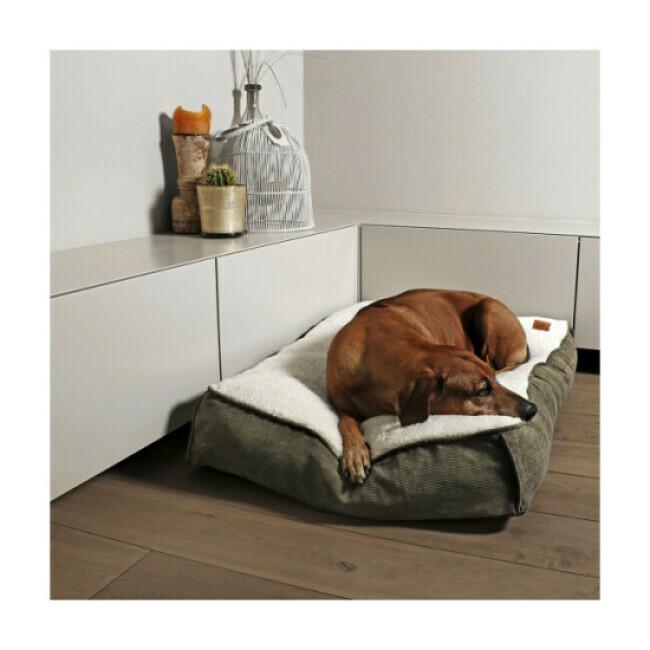 Coussin relax Novis Duvoplus pour chien