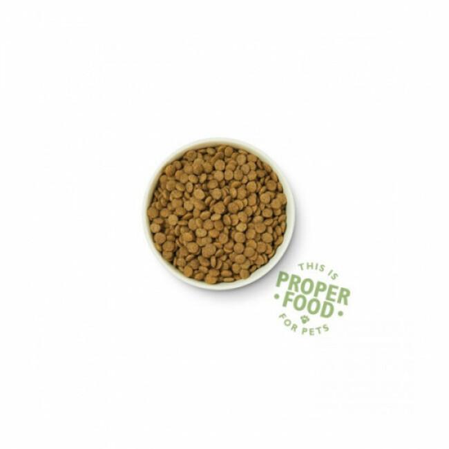 Croquettes bio Lily's Kitchen au poulet et légumes pour chien