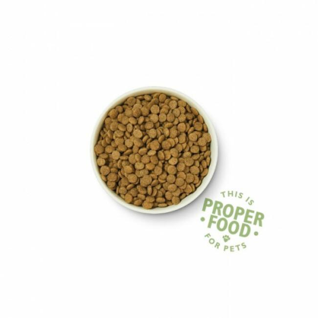 Croquettes bio pour chien adulte au poulet et légumes Lily's Kitchen Sac 7 kg