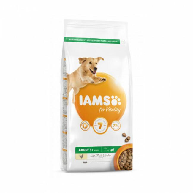Croquettes IAMS for Vitality au poulet pour chien Adulte de Grande race