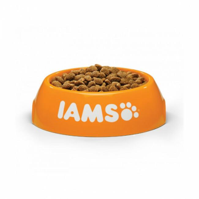 Croquettes IAMS for Vitality Light pour chien stérilisé Petite et Moyenne race