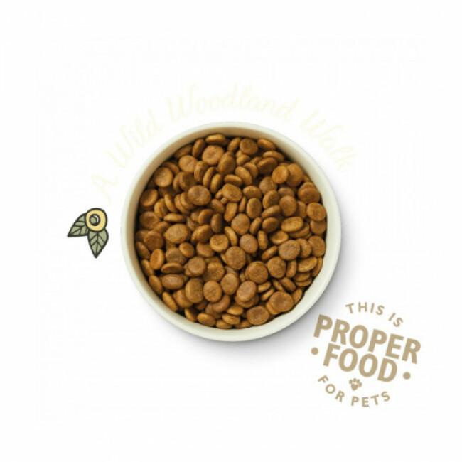 Croquettes Lily's Kitchen sans céréales au chevreuil et canard pour chien
