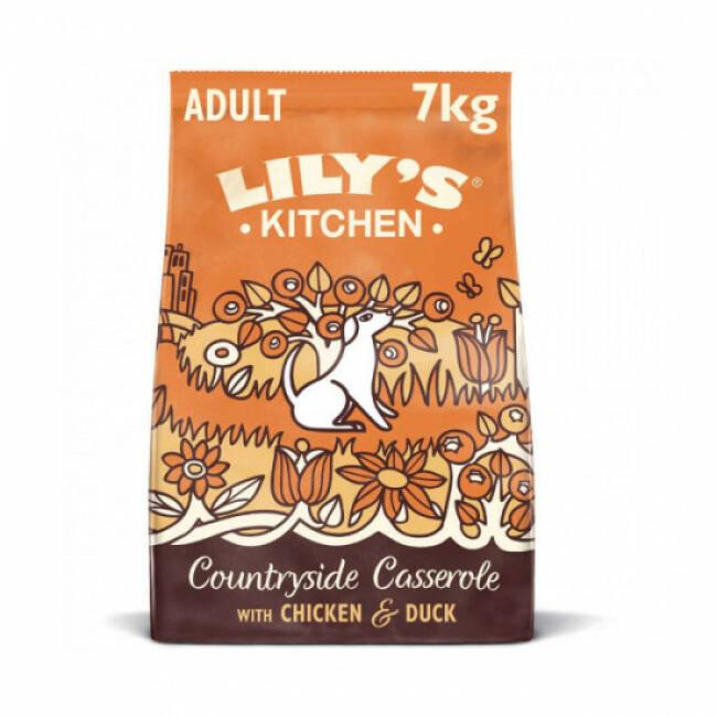 Croquettes Lily's Kitchen sans céréales au poulet et canard pour chien