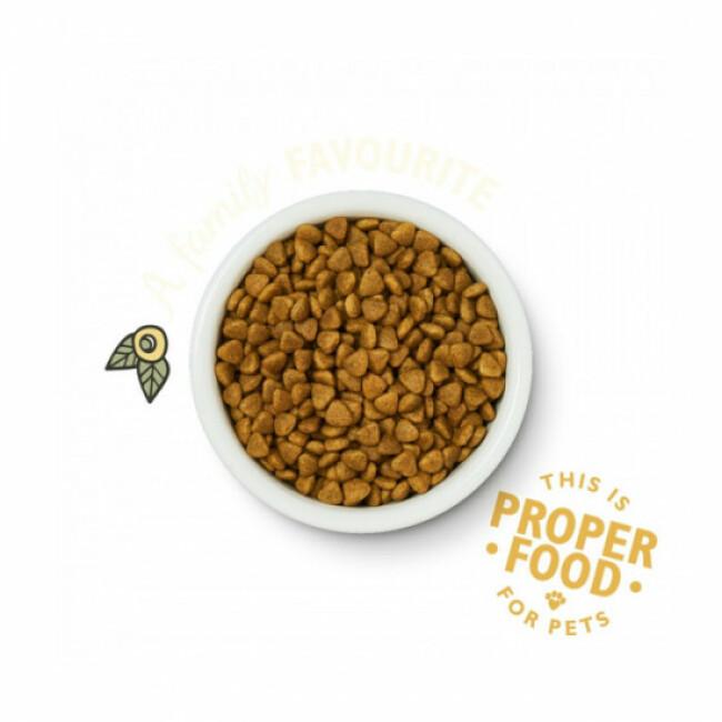 Croquettes Lily's Kitchen sans céréales au poulet et herbes pour chat