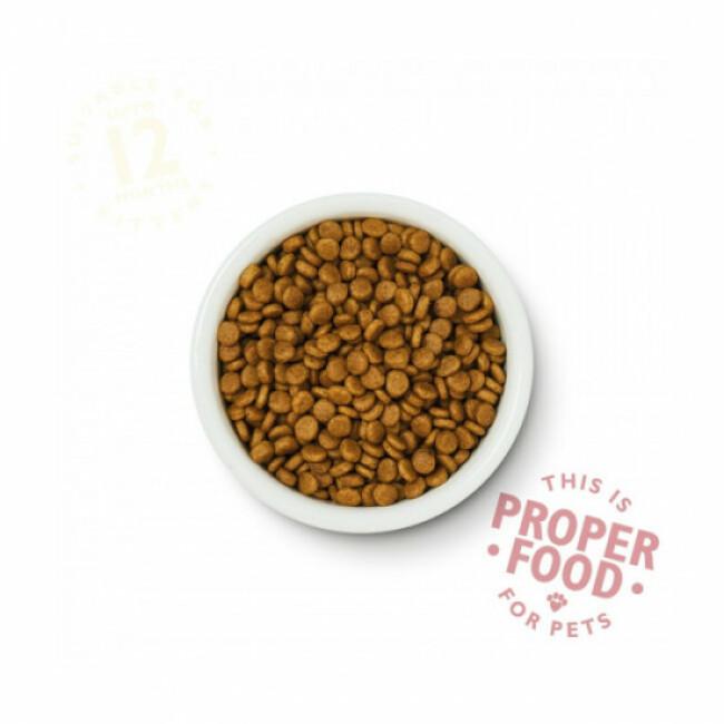 Croquettes Lily's Kitchen sans céréales au poulet pour chaton