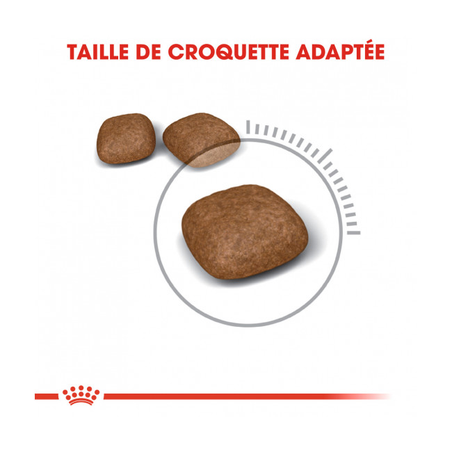 Croquettes pour chat adulte Royal Canin Urinary Care