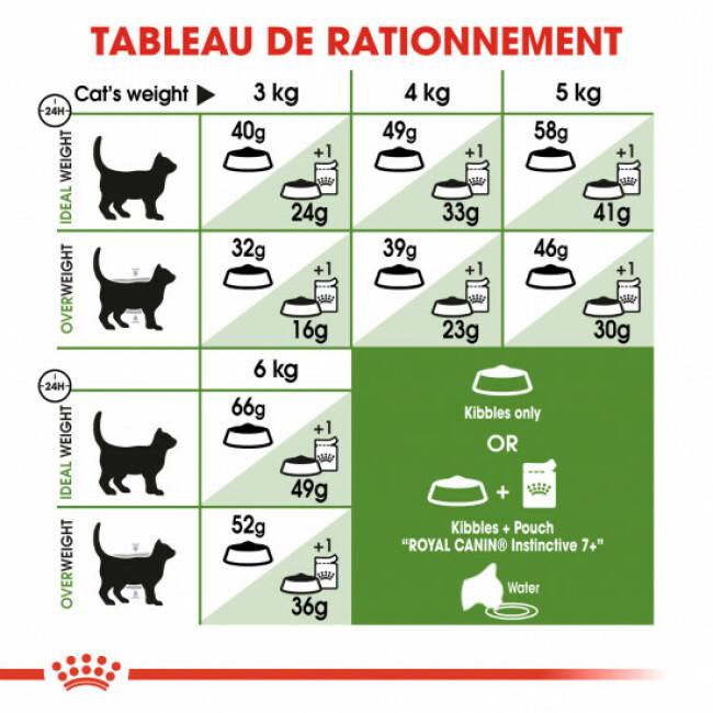 Croquettes pour chat d'extérieur Royal Canin +7 ans Sac 4 kg