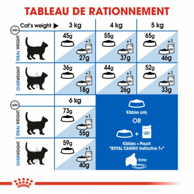 Croquettes pour chat d'intérieur Royal Canin +7