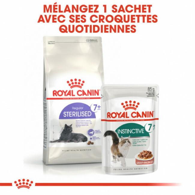 Croquettes pour chat Royal Canin adulte stérilisé +7 ans