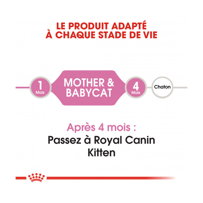 Croquettes pour chaton Royal Canin Babycat 34