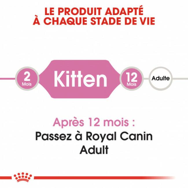 Croquettes pour chaton Royal Canin Kitten 36