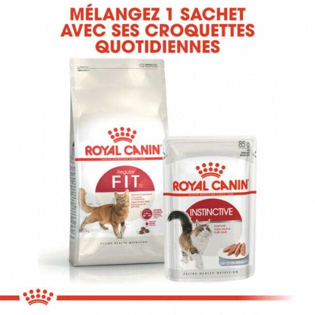 Croquettes pour chats Royal Canin FIT 32