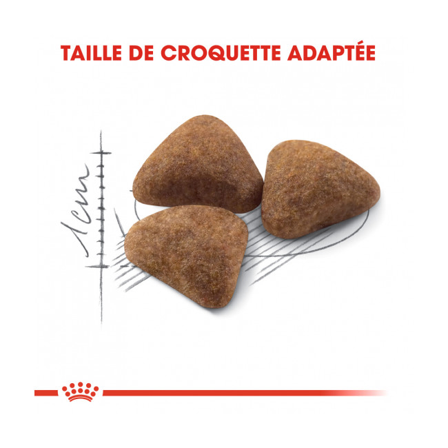 Croquettes pour chats Royal Canin Indoor 27