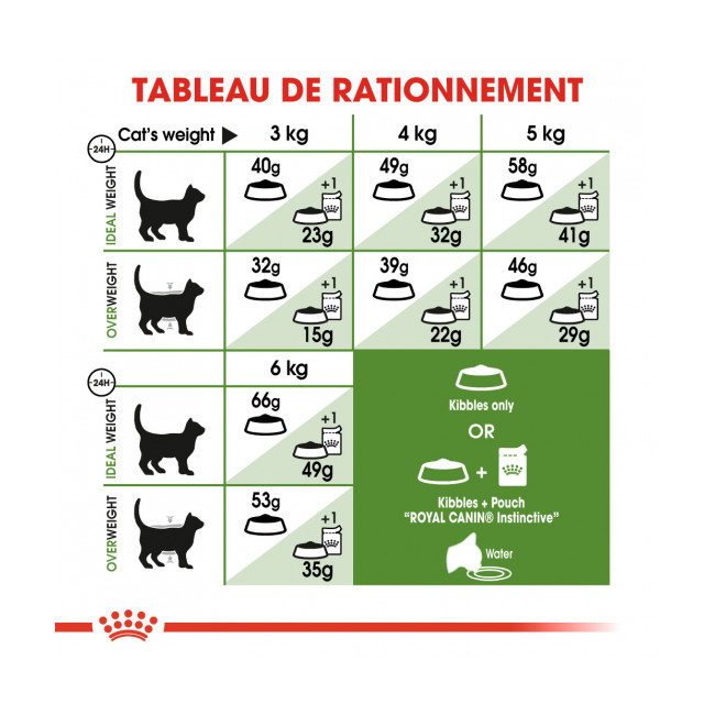 Croquettes pour chats Royal Canin Outdoor