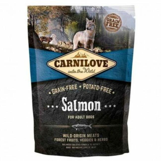 Croquettes pour chien adulte Carnilove saumon