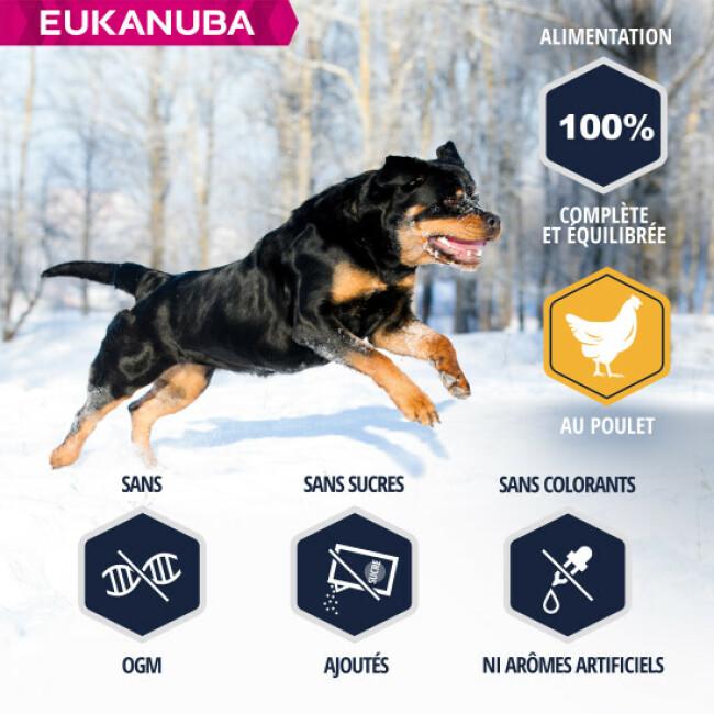 Croquettes pour chien adulte Eukanuba Rottweiler Sac 12 kg