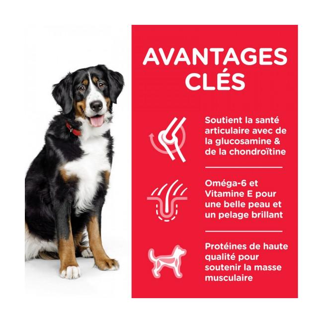 Croquettes pour chien adulte grandes races Hill's Science Plan poulet Sac 18 kg