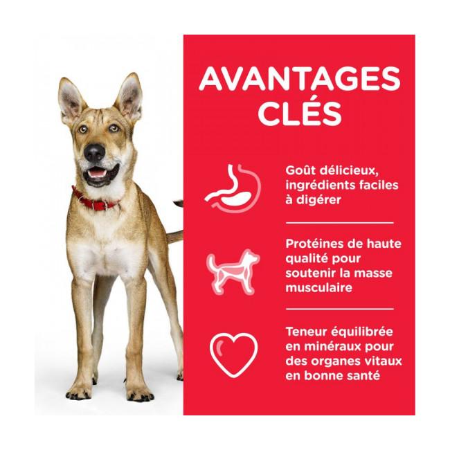 Croquettes pour chien adulte Hill's Science Plan Performance Sac 14 kg