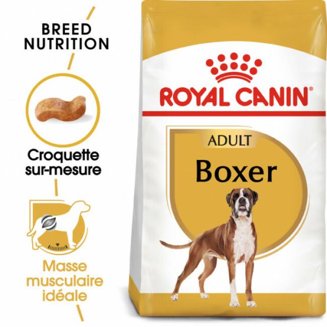 Croquettes pour chien adulte Royal Canin Boxer