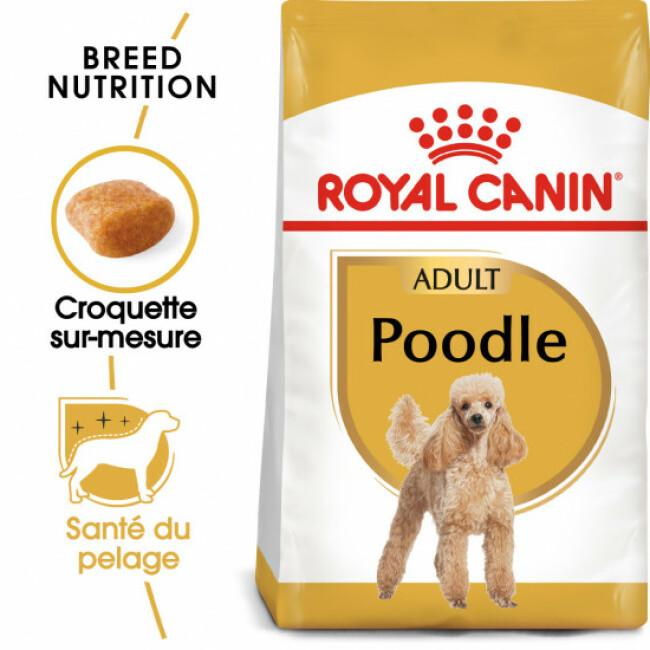 Croquettes pour chien adulte Royal Canin Caniche 30 Sac 1,5 kg
