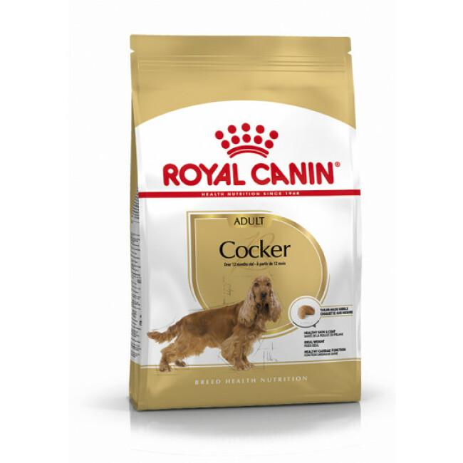 Croquettes pour chien adulte Royal Canin Cocker