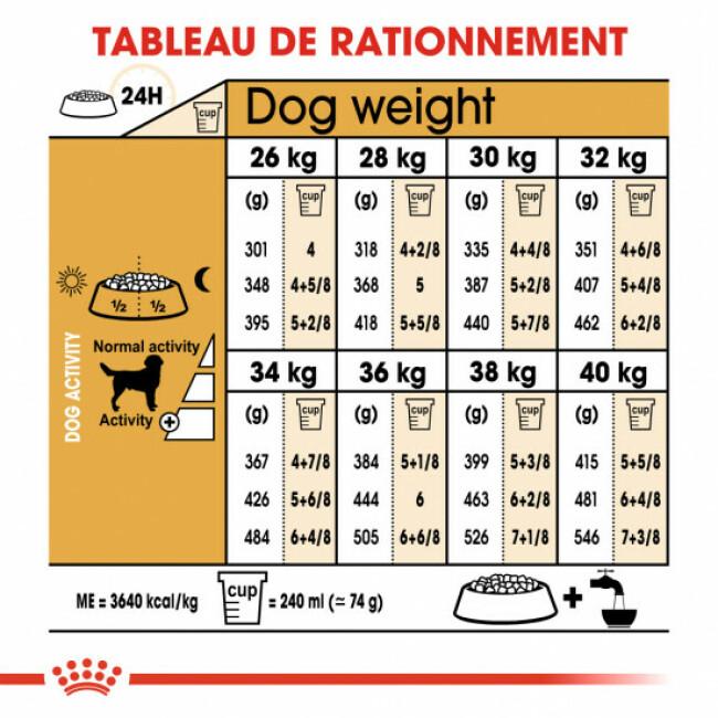 Croquettes pour chien adulte Royal Canin Labrador Retriever Sac 12 kg