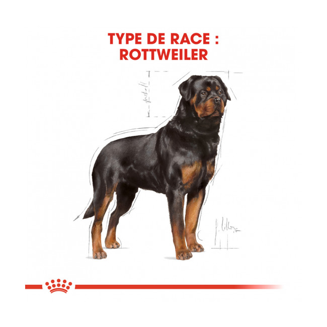 Croquettes pour chien adulte Royal Canin Rottweiler Sac 12 kg