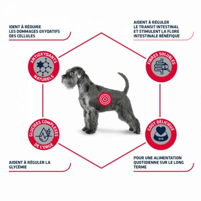 Croquettes pour chien Advance Veterinary Diets Diabetes Colitis