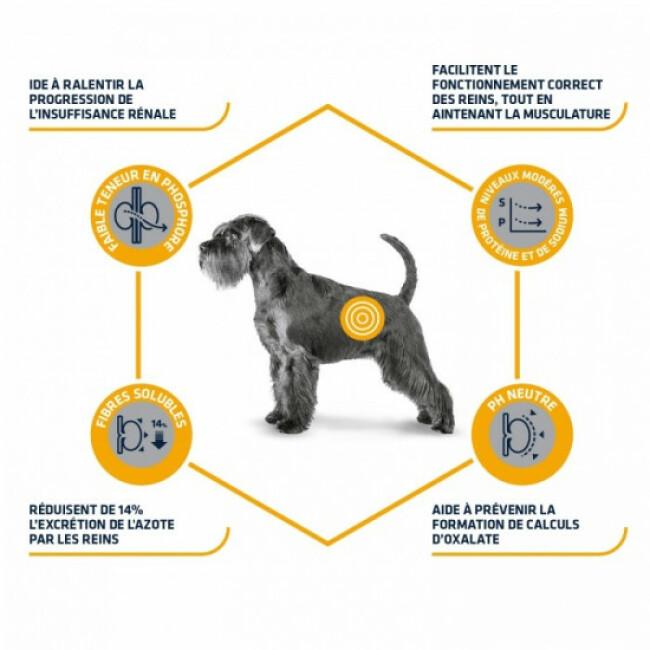Croquettes pour chien Advance Veterinary Diets Renal Failure