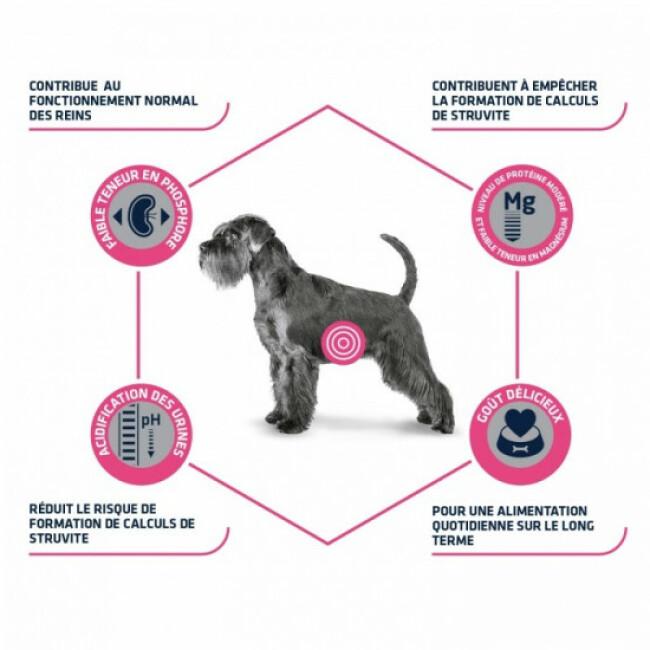 Croquettes pour chien Advance Veterinary Diets Urinary