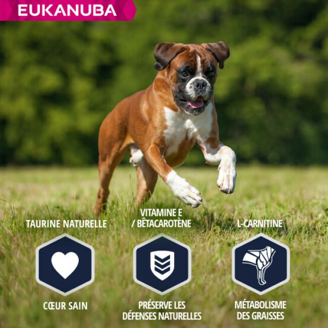 Croquettes pour chien Boxer Breed Nutrition Eukanuba Sac 12 kg